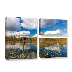Beaver Marsh by Cody York 3 Piece Gallery-Wrapped Canvas Flag Set