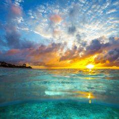 ♡ Ocean Sunrise ❤ The best kind of wake up ✌  Great Barrier Reef, Queensland, Australia  @ladyelliotislandecoresort @southerngreatbarrierreef @queensland @australia  #seeaustralia #thisisqueensland #ladyelliotisland #greatbarrierreef