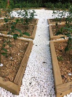 Build it up. ( #teagarden / #teaplantation / #teatree / #shiding / #newtaipei / #taiwan / #thousandsislandslake / #2015 / #田園 / #茶園 / #茶樹 / #石碇 / #新北市 / #臺灣 / #台灣 / #台湾 )