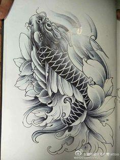 จ Japanese Koi Fish Tattoo, Koi Fish Drawing, Japanese Tattoo Designs, Fish Drawings, Koi Tattoo Sleeve, Carp Tattoo, Japanese Sleeve Tattoos, Lion Tattoo, Tatoo Carpe Koi