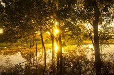 The Pantanal, Paraguay