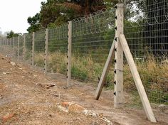 Interesting Facts About The Electric Fence