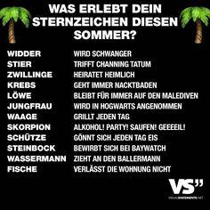 Visual Statements® Was erlebt dein Sternzeichen diesen Sommer? Sprüche/ Zitate/ Quotes/ Spaß/ witzig/ lustig/ Fun