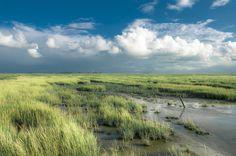 Prachtige natuur van Ameland, zelfs met een dreigende regenbui in het vooruitschiet