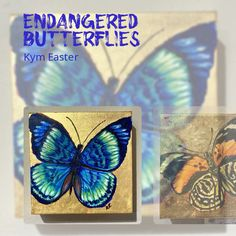 Butterflies on Gold Leaf by Kym Easter Gold Leaf, Butterflies, Easter, Videos, Instagram, Easter Activities, Butterfly