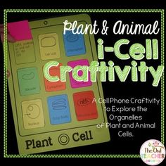 1000+ images about The Owl Teacher Products on Pinterest ...