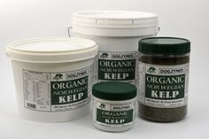 DOGZYMES Organic Norwegian Kelp for Pets 12Ounce -- Details can be found by clicking on the image.Note:It is affiliate link to Amazon.