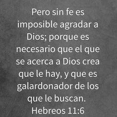 Pero sin fe es imposible agradar a Dios; porque es necesario que el que se acerca a Dios crea que le hay, y que es galardonador de los que le buscan.  Hebreos 11:6