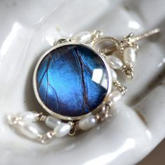 real blue morpho butterfly wing jewelry