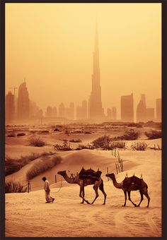 Dubai.........paradise for the zilionaires built on the backs of the those in the front of this picture.