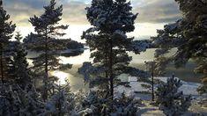 #Kustavi #Finland photo by Janne Nieminen - Satu Karlin (@KarlinSatu) | Twitter