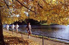 Paris - Bois de Boulogne