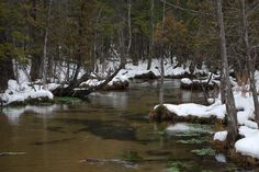 The Grass River Natural Area in the winter...a very nice place to walk