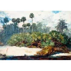 Posterazzi in A Florida Jungle Poster Print by Winslow Homer PDX373231LARGE