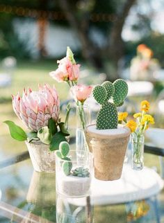 Wedding Day cacti-clad cocktail table - Want to utilize cacti and succulents in your desert wedding, but don't know how? Try one of these 12 ideas on for size. For more wedding decor inspo, head to Domino. Cactus Wedding, Floral Wedding, Wedding Colors, Wedding Flowers, Spring Wedding Centerpieces, Wedding Decorations, Table Decorations, Cactus Centerpiece, Centerpiece Ideas