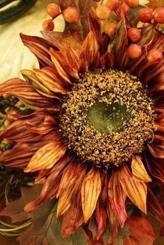 Autumnal beauty. Rust Orange Sunflower.#Autumn #Fall