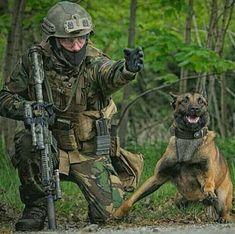 Military Working Dog!