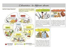 Sciences CE2 – Alimentation et digestion « Cartable dune maitresse