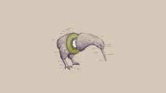 birds fruits humor funny kiwi illustrations photomanipulations white background - Wallpaper (#1527881) / Wallbase.cc