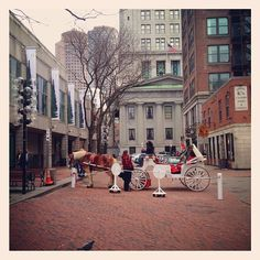 a lovely white carriage at Quincy Market, Boston 2012.03.24