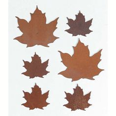 Rusted Tin-Asst Maple Leaves