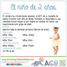 Cómo es el niño de 2 años  atencionycuidadosdelbebe  desarrolloinfantil  Desarrollo Del Niño eb718f817b0