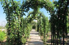 Casa de los sultanes de Granada. Con huertos y jardines. El nombre es un simbolismo poético-religioso que alude a dios, Allah, como arquitecto, creador del universo. #Generalife