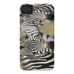Zebras in Masai Mara National Reserve iPhone 4 Covers