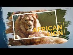 After Effects template | Wild Nature Slideshow https://youtu.be/5Nr7qVAX6Yk