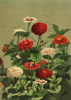 Американская художница Ellen Bowditch Thayer Fisher (1847 - 1911). Обсуждение на LiveInternet - Российский Сервис Онлайн-Дневников