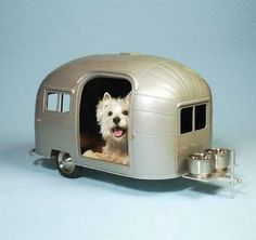 These Doggy Houses are crazy! They make me goggle...lol.