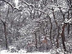Hull a hó, hull a hó - YouTube
