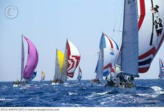 Sailboats under spinnaker in sail race.