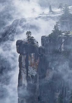 Precipice and fog, Merced River Canyon, Yosemite National Park; photo by .Robin Black