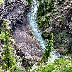 Best place in Alberta to camp hands down...Cresent falls is amazing! #Canmore #Banff