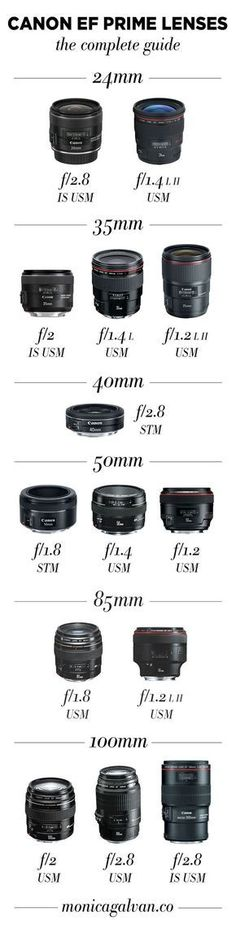 Infographic: What's a prime lens and which should you use? Check out this guide on Canon prime lenses to help you choose the best prime lens for your photography style.