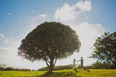 CEREMONY: Sunset Ranch Ceremony Option 2: Under the big oak (?) tree