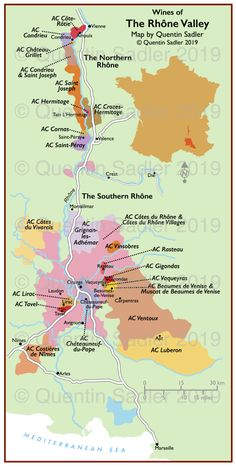 Posts about Rhône wine map written by quentinsadler Boot Camp, French Wine Regions, Wine Infographic, Wine Education, Wine Photography, Wine Tasting Party, Spanish Wine, Wine Guide, Wine Night