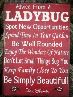 Home Decor Kitchen Decor Dining Room Hand Painted Wood Sign Advice From A Ladybug by CarovaBeachCrafts FB - Carova Beach Crafts by debora Ladybug Crafts, Ladybug Party, Ladybug Decor, Painted Wood Signs, Wooden Signs, Hand Painted, Painted Pebbles, Alpha Sigma Alpha, Spring Home Decor