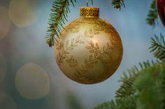 6 Unique Christmas Tree Photo Ideas - The Photo Argus Unique Christmas Trees, Christmas Bulbs, Merry Christmas, Christmas Photography, Photo Tree, Tis The Season, Hygge, Seasons, Watercolor