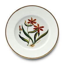 """création classico-chic de Pinto Paris, pour une ambiance """"cabinet de curiosité"""" et le charme d'une vaisselle joliment désuète… http://www.pintoparis.com"""