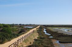 Walkway through beautiful Ria Formosa Natural Park. The colour changes with the moving sun