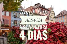 ruta con Alsacia & Selva Negra Neon Signs, Travel, Alsace, Black Forest, Paths, Voyage, Viajes, Traveling, Trips