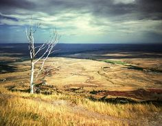 An inspirational viewpoint over a Wyoming Valley, this photograph will lift your spirits like being there in person.  This summer we spent roaming around some of the states I grew up in, mainly Montana and a Wyoming Valley like this one.