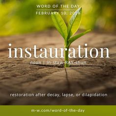 Today's #wordoftheday is 'instauration'  .  #language #dictionary #merriamwebster