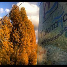 #matarranya20 el otoño es una caña - taken by @javisolfa - via http://instagramm.in