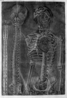 anatomy Gautier d'Agoty 1759