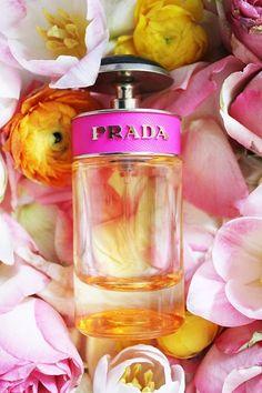 Prada Perfume Wall art Bathroom decor by PetalsandJasmine on Etsy