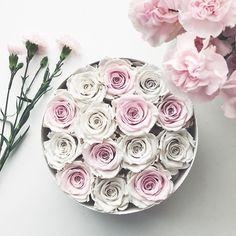Real roses that last a year 💕 no water ever needed😏 at bloomroomnyc.com💗 #flowers #florist #floral  #flowerpower #flowerslovers #flowerbox #boxofflowers  #rosebox #foreverrose #infinityroses #uniquegifts #pink  #white #uniqueflowers #stylish #style #instagood #instagirl #instafashion #instaflowers #instalikes #photooftheday #tagsforlikes #bloomroom #bloomroomnyc #brooklyn #newyork