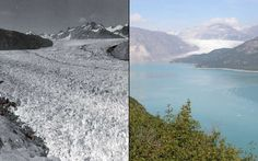 Photographs from the 1940s to the 2000s show the drastic impact of climate change on our planet's glaciers. Here is a photo of Alaska's Muir Glacier, pictured in August 1941 (left) and August 2004 (right).